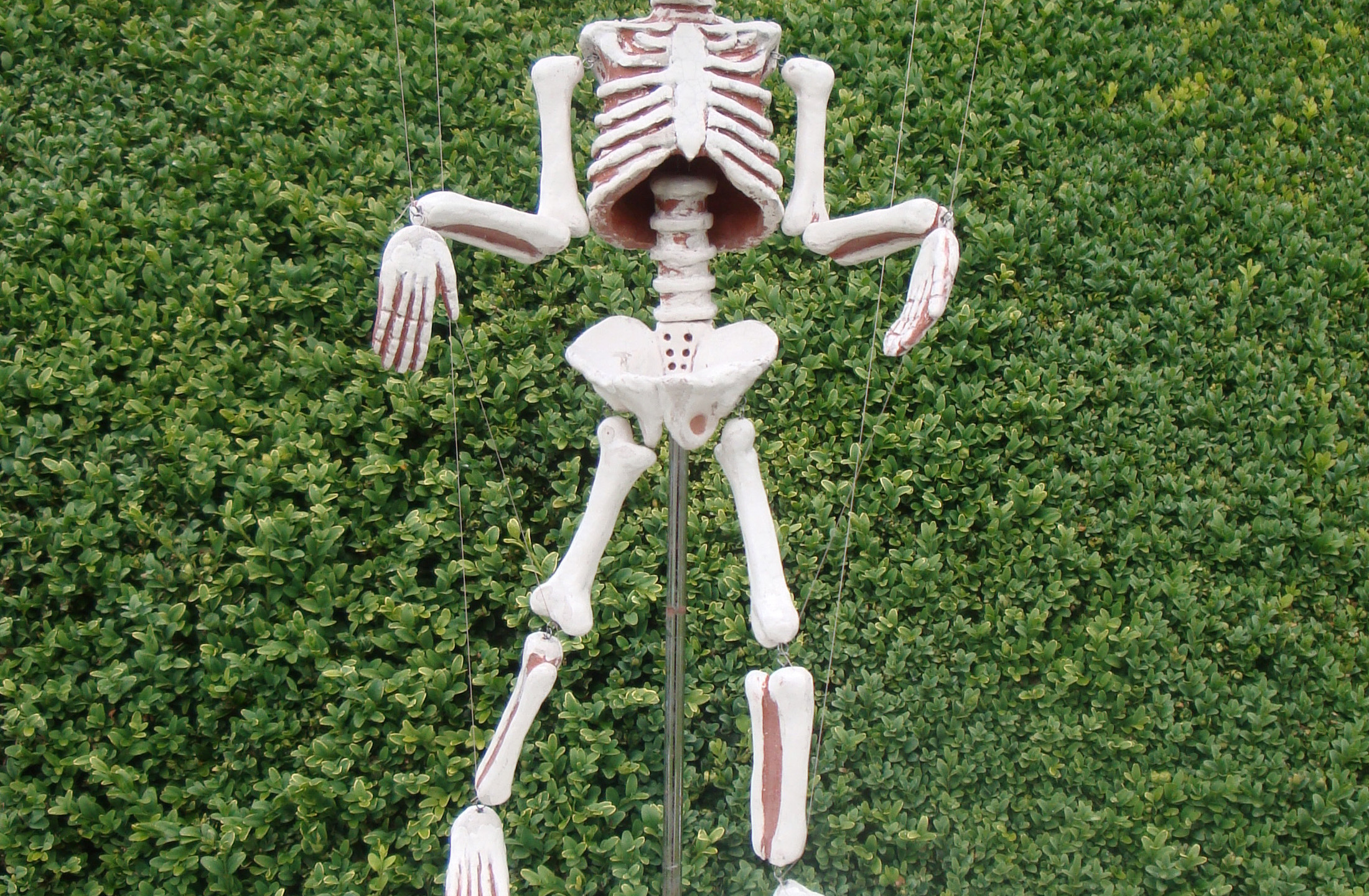 """""""If you cannot get rid of the family Skeleton, you may as well make it dance."""" B. Shaw"""