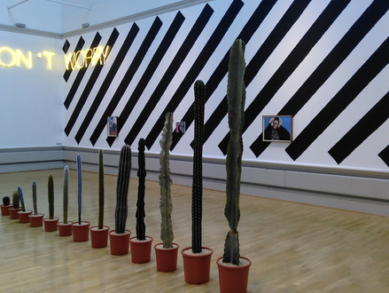 Pottery gallery & Martin Creed exhibition at the Harris Museum