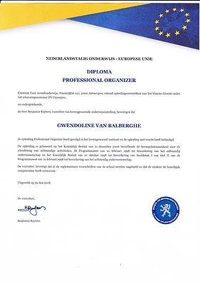diploma professional organizer