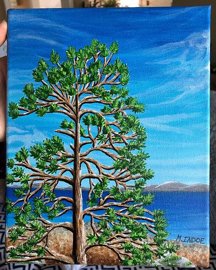 Lake Superior Pine