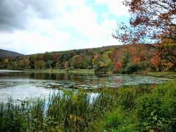 Danby Pond