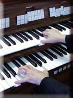 organo1.jpg
