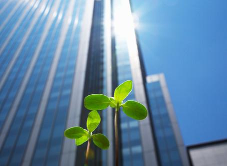 מנהיגות עסקית - הצלחות מעוררות השראה