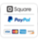 Payment Logo PNG small.png