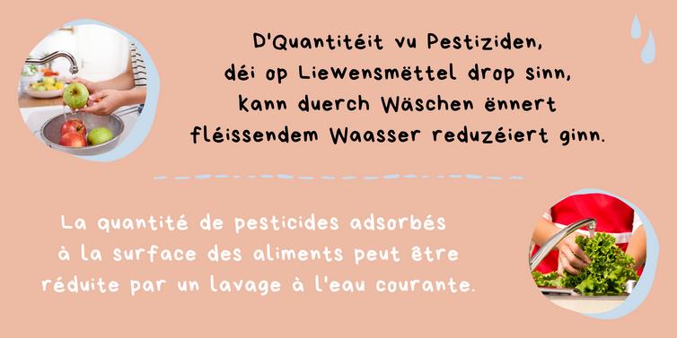 Kleng Schrett_Pestiziden_Fakt 2.png