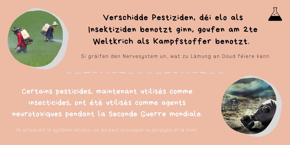 Kleng Schrett_Pestiziden_Fakt 6.png
