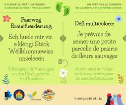 Erausfuerderung 7 (16_04_21).png