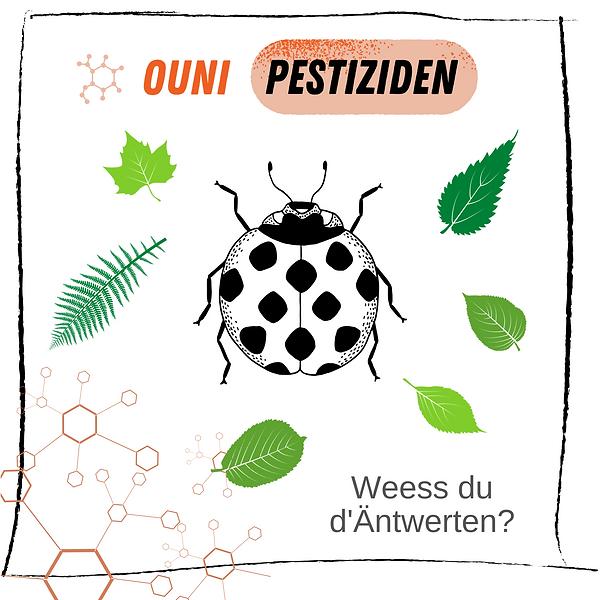 Kleng Schrëtt - Quiz - Pestiziden LU.png
