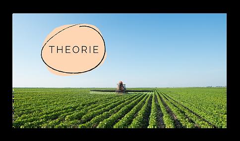 Pestiziden - Theorie.png