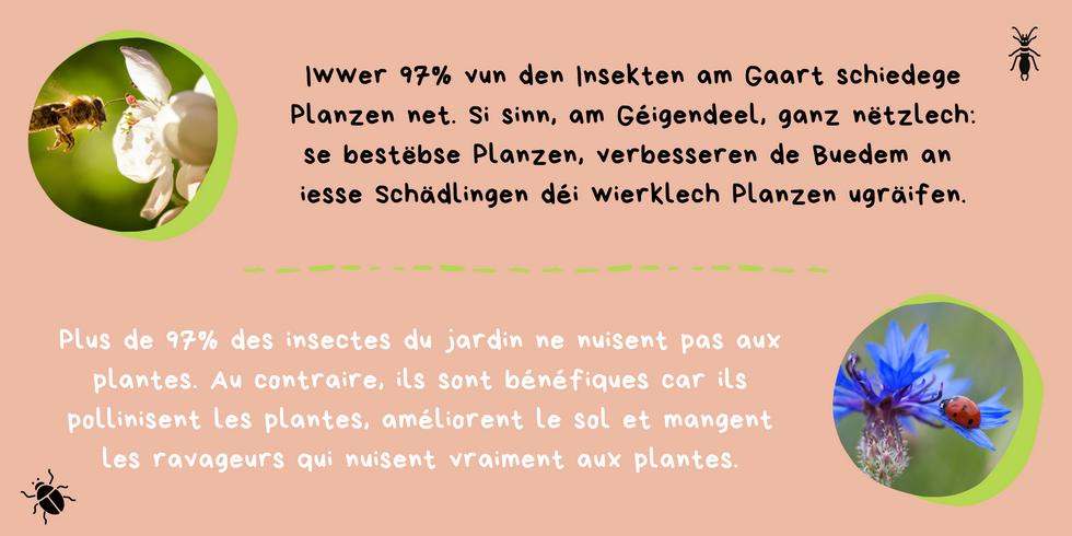 Kleng Schrett_Pestiziden_Fakt 3.png