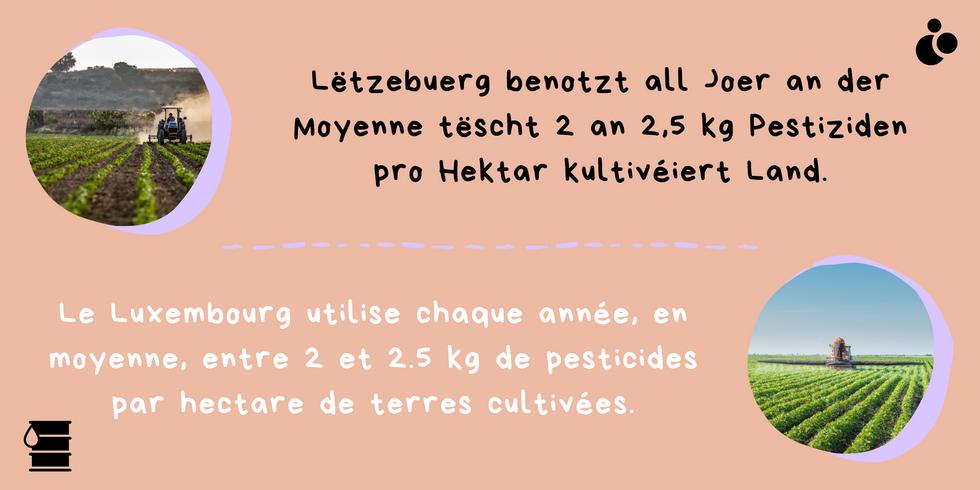 Kleng Schrett_Pestiziden_Fakt 9.png