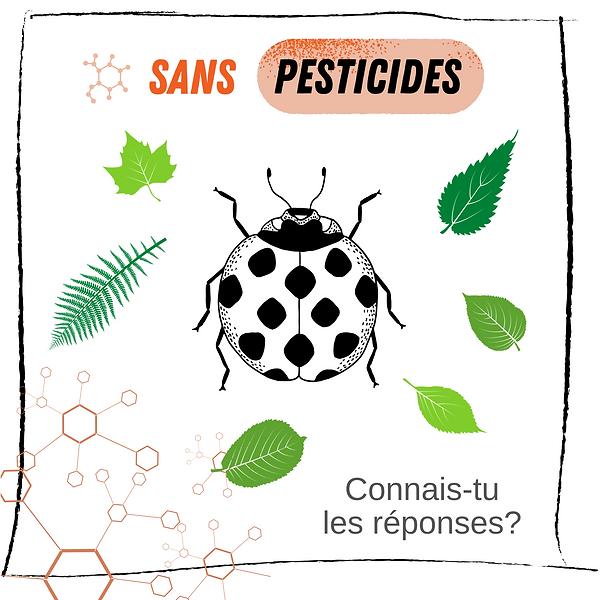 Kleng Schrëtt - Quiz - Pestiziden FR.png