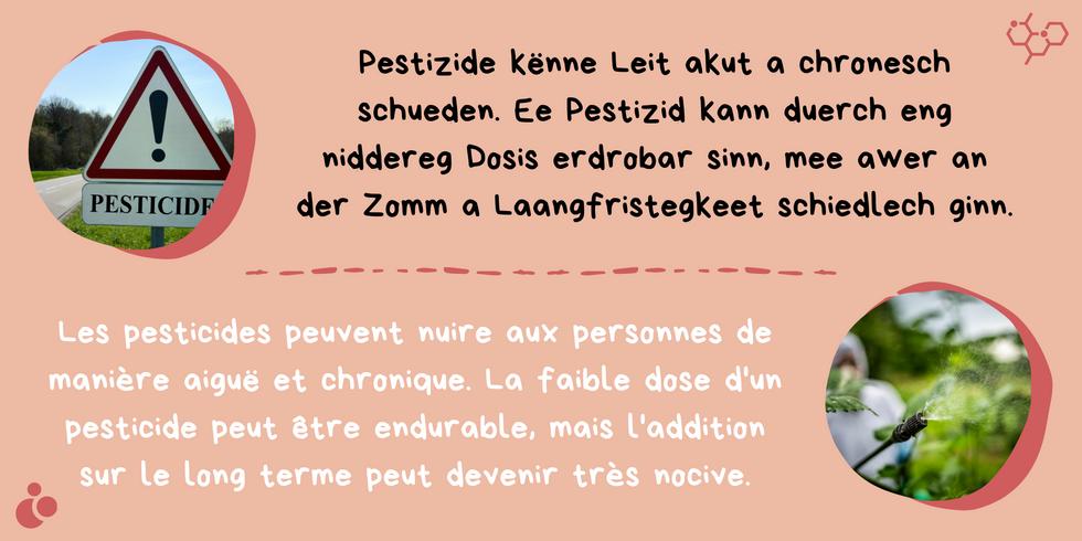 Kleng Schrett_Pestiziden_Fakt 4.png