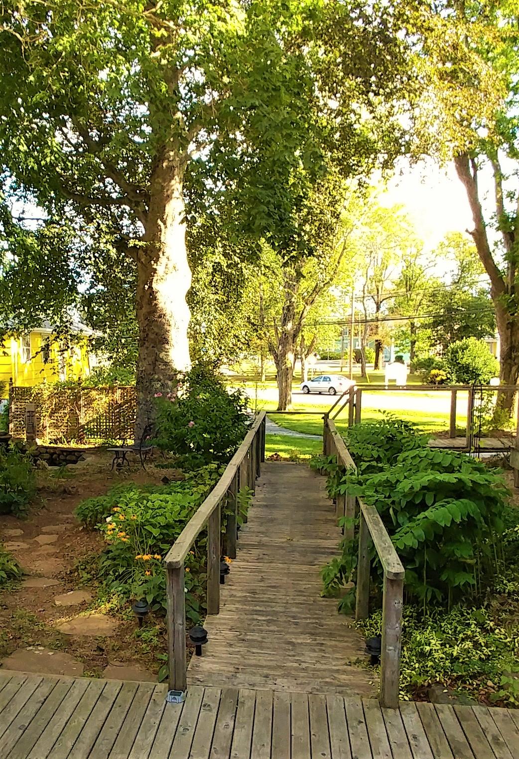 A verdant walkway