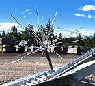 Wire Bird Hazing Device