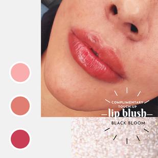 Lip Blush San Antonio Texas
