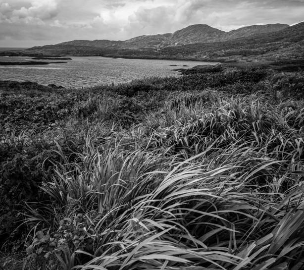 Beara Peninsula 1 - Irlande