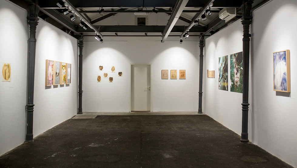 Gallery Tir / Mostovna, Solkan, Slovenia, 2019