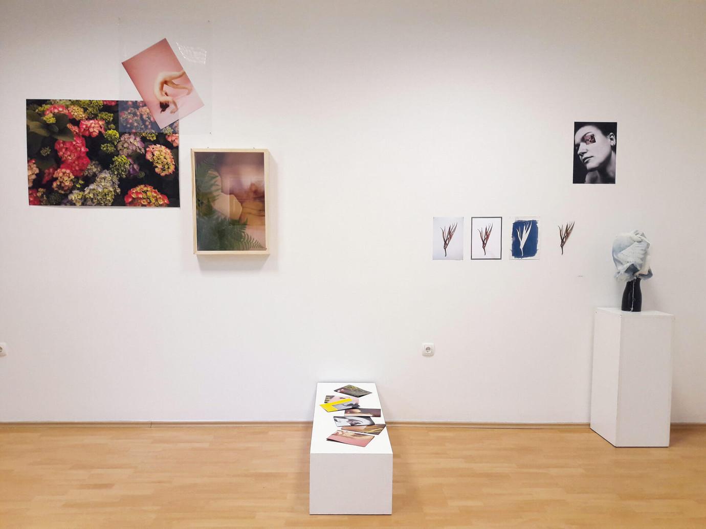 Photon Gallery, Ljubljana, Slovenia, 2017