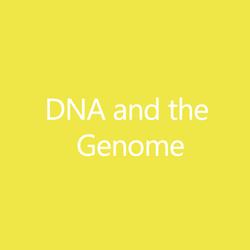DNAGenomeTitleButton