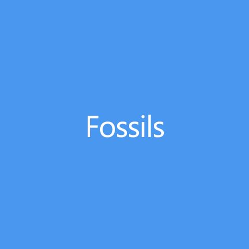 FossilsTitleButton