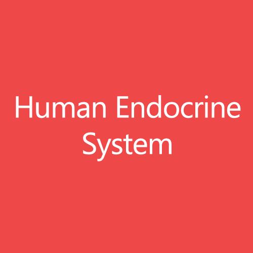 HumanEndocrineSystemTitleButton