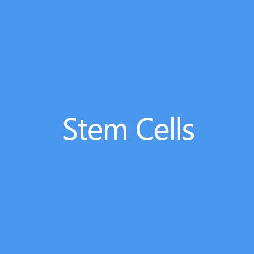 Stem Cells Title Button