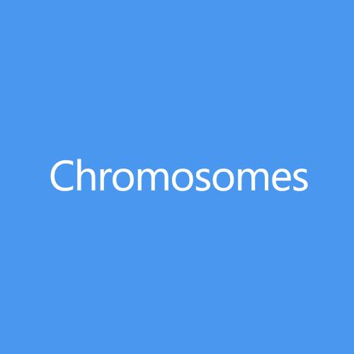 Chromosomes Title Button