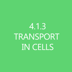 413 Transport in Cells Title Button