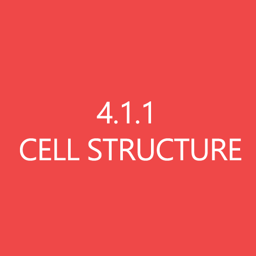411 Cell Structure Title Button