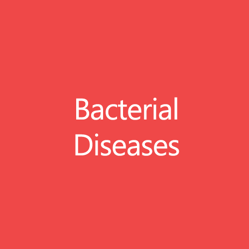 BacterialDiseasesTitleButton