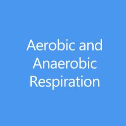AerobicAnaerobicTitleButton