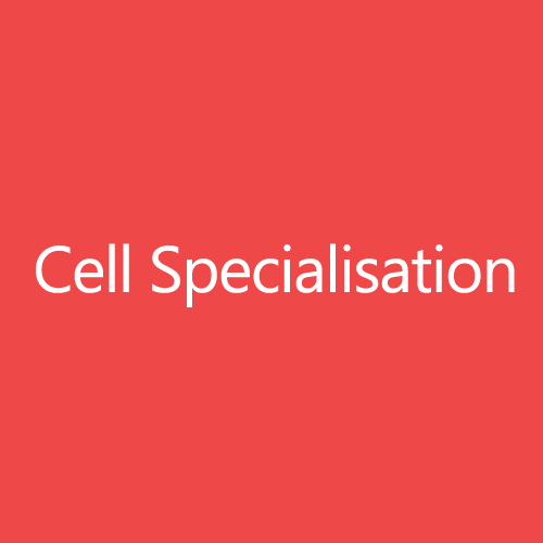 Cell Specialisation Title Button
