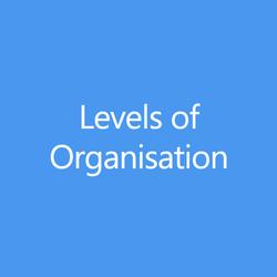 LevelsofOrganisationTitleButton