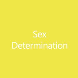 SexDeterminationTitleButton