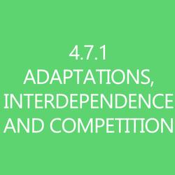 471InterdependenceandCompetitionTItleButton