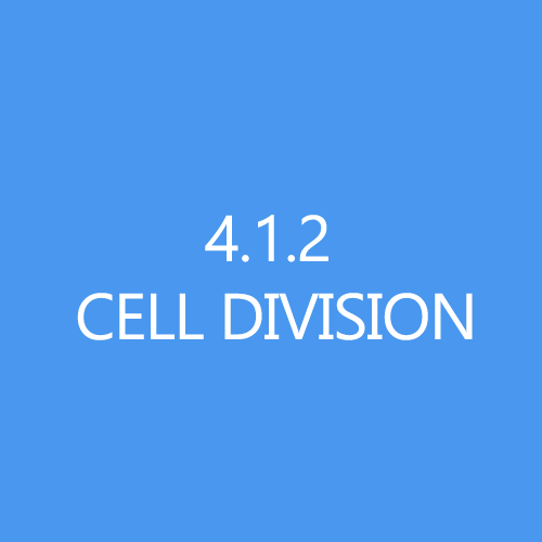412 Cell Division Title Button