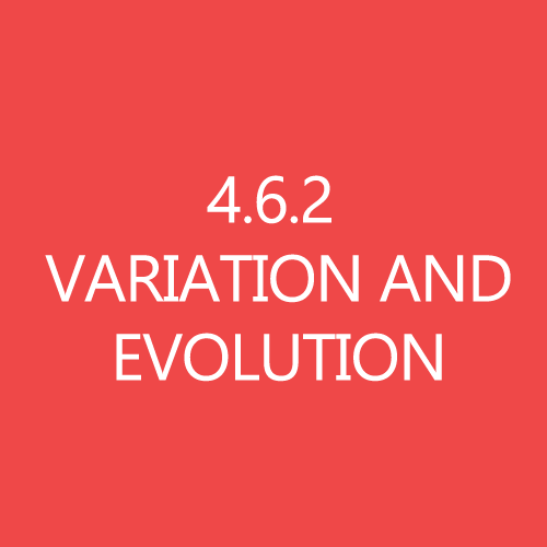 462VariationandEvolutionTitleButton