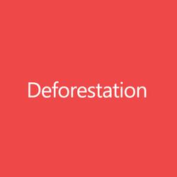 DeforestationTitleButton