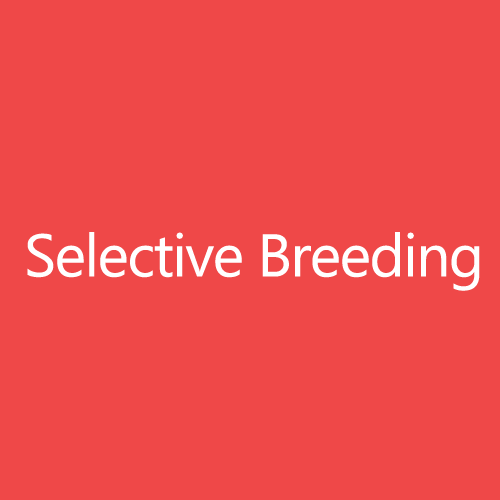 SelectiveBreedingTitleButton