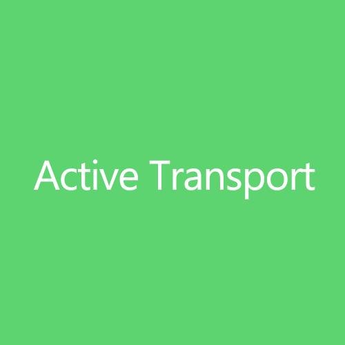 Active Transport Title Button