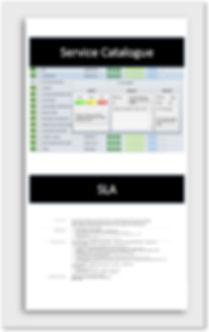 SLA VIWP.jpg
