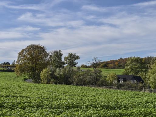 Cadastro Ambiental Rural (CAR): Solução para regularização de terrenos rurais