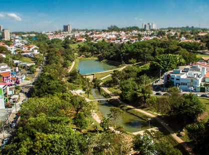 Sorocaba: Você conhece a rica vegetação presente nesta cidade?