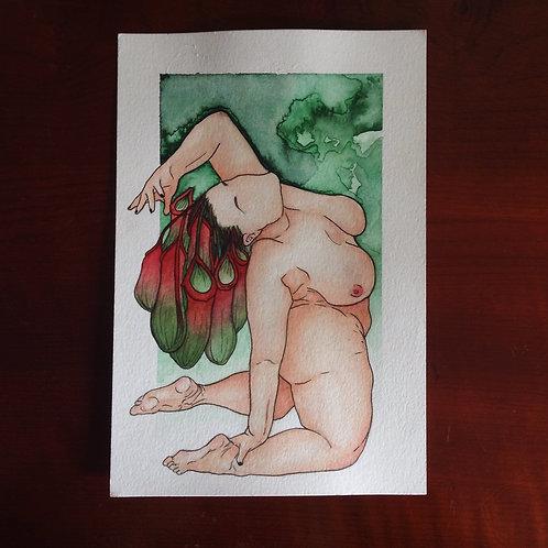 Corpos Botânicos MUM- @polichaeto
