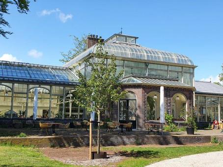 Wintertuin Baarn - een tropisch kopje thee