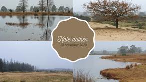 Novemberwandeling Kale Duinen