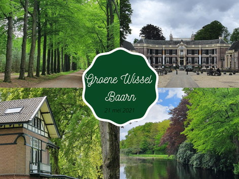 Het bos is groen - Groene Wissel Baarn