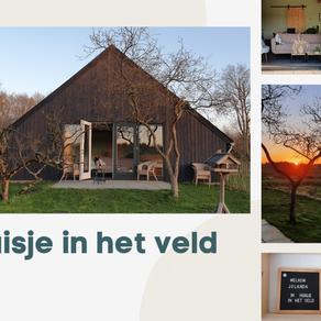 Workation in 'Huisje in het veld' in Drenthe