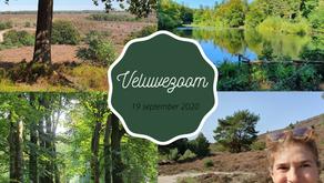 Expeditie: dagtocht op de Veluwezoom